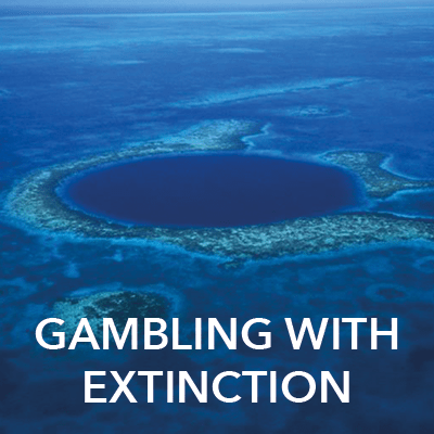 The Great Blue Hole, Belize. Credit: Juan Pablo Moreiras/FFI