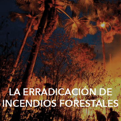 The RRF has supported fire fighting in the Chapada dos Veadeiros National Park, Brazil. Credit: Marcelo Scaranari